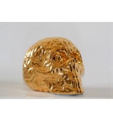 Skull Brain 'GOLD' by Emilio Garcia